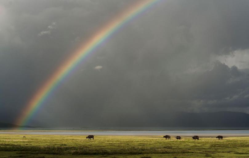rainbow- Ngorongoro Crater-Tanzania